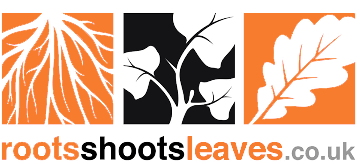 Roots Shoots Leaves Tree Surgery Logo